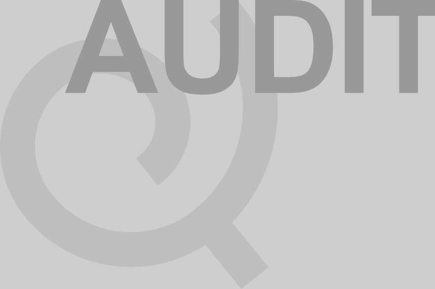 Siqura - Audit